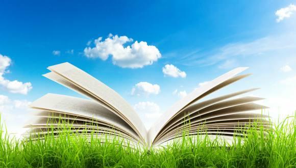ספר פתוח על כר דשא