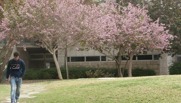 אירועי המיבדה לחקר התפתחות קריירה