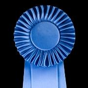 פרסים ומענקי מחקר
